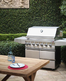 outdoor entertaining design BBQ ideas
